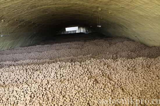 Оптимальная температура хранения картофеля